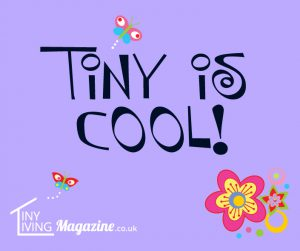 facebook-tiny-is-cool-violet